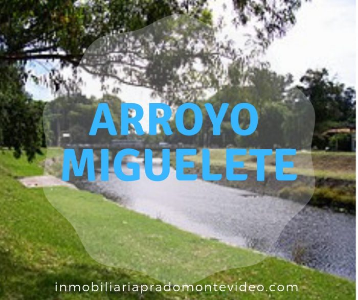 Arroyo Miguelete montevideo